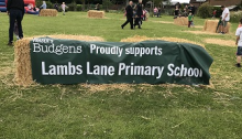Working with Lambs Lane School